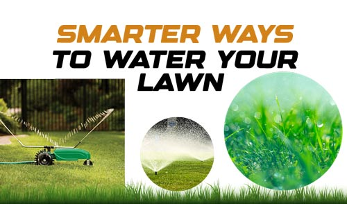 Smarter Ways to Water Your Lawn