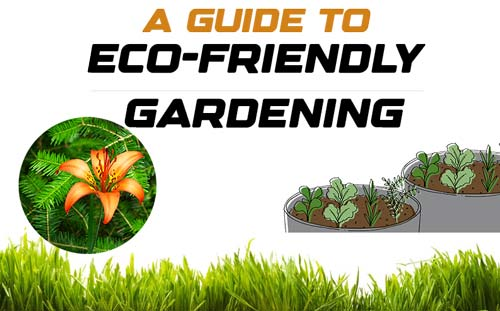 A Guide to Eco friendly Gardening