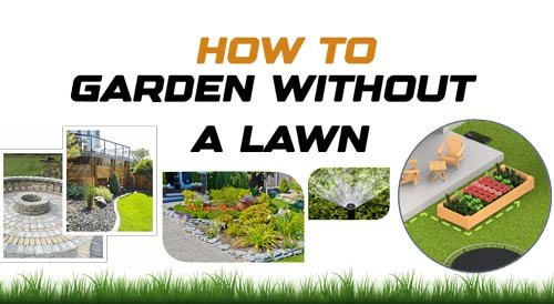 Garden without a Lawn