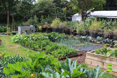 Planning your Permaculture Garden